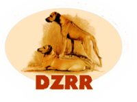 DZRR_logo