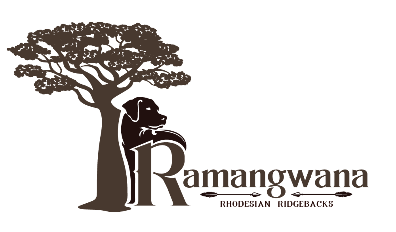Ramangwana Rhodesian Ridgebacks